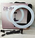 Профессиональная кольцевая LED лампа ZB-R14 (35 см) селфи кольцо 36W штатив в подарок, фото 5