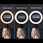 Кольцевая LED лампа 16 см селфи кольцо для блогера, фото 5