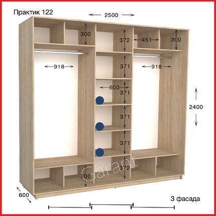 Шкафы купе ПРАКТИК 122 / ширина-2500/ глубина-450/600/ высота-2200/2400 (Гарант), фото 2