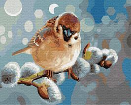 Картина по Номерам Снигирь 40х50см RainbowArt