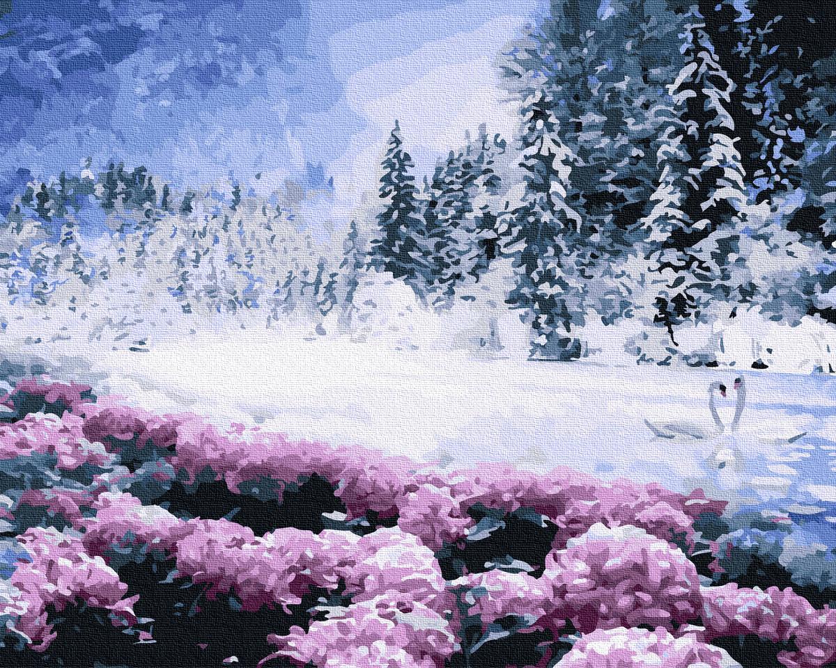 Картина по Номерам Зимнее озеро 40х50см RainbowArt