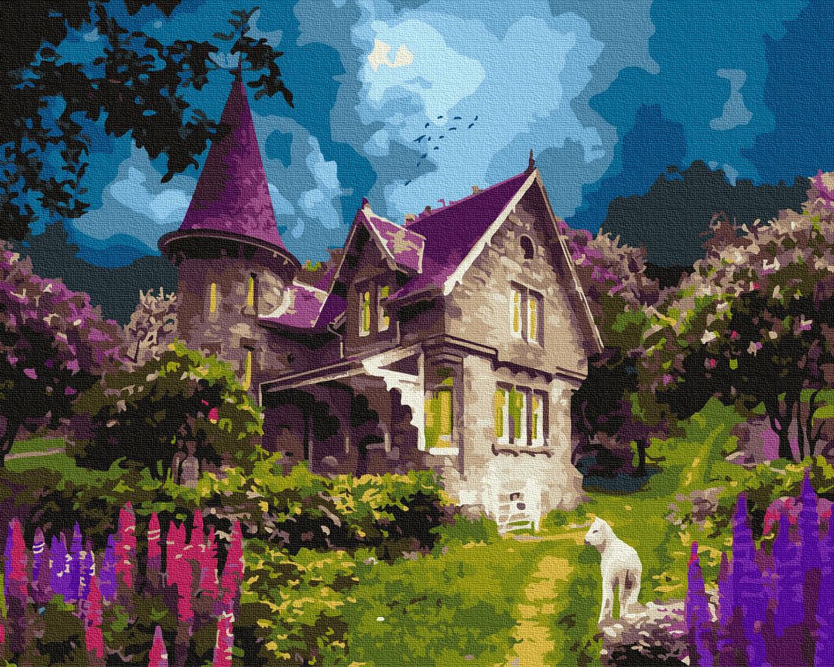 Картина по Номерам Волшебный замок 40х50см RainbowArt