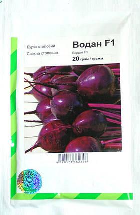 Семена свеклы Водан F1, 20 г — ранний гибрид (85-90 дней), круглая, столовая Bejo, фото 2