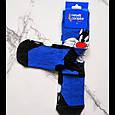 Шкарпетки високі з принтом Кіт Сильвестр розмір 37-43, фото 2