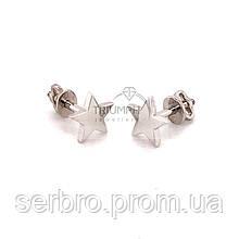 Серебряные серьги гвоздики Звезда