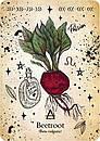 Green Witch Oracle Cards/ Оракул Зеленої Відьми, фото 7