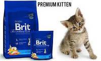 Brit Premium CAT KITTEN сухой корм 0.8кг для котят и беременных кошек.