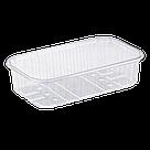 Пластиковий лоток для ягід 250 грам T6 ПЕТ, фото 2