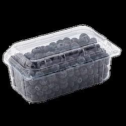 Пластиковый судок ПЭТ для упаковки ягод 500 грамм TL1
