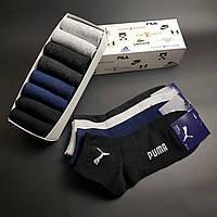 Набор средних мужских носков Найк, Пума, Фила набор 8 пар хлопок (копия), фото 1