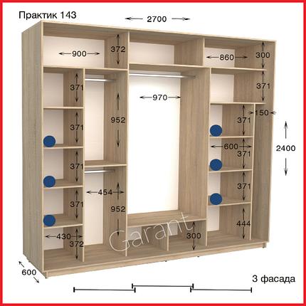 Шкафы купе ПРАКТИК 143 / ширина-2700/ глубина-450/600/ высота-2200/2400 (Гарант), фото 2