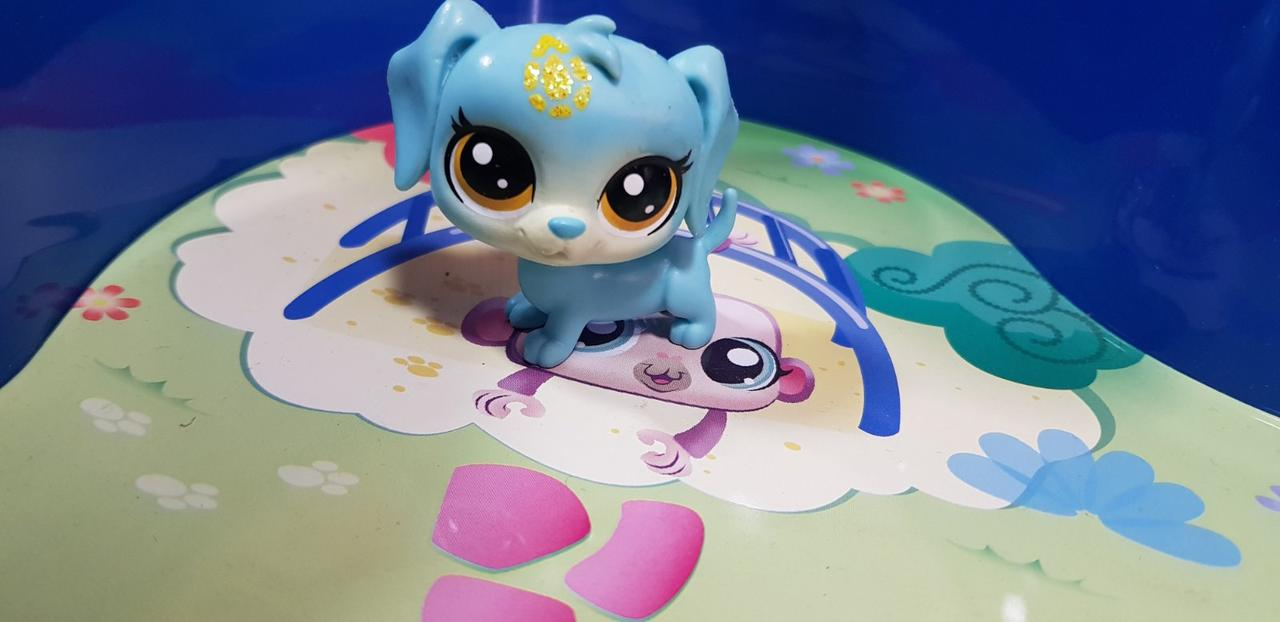 Littlest pet shop lps игрушка Hasbro лпс пет шоп собачка