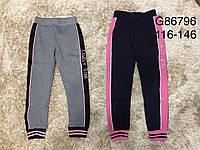 Спортивные штаны для девочек, Grace, 116,122,128,134,140,146 см,  № G86796