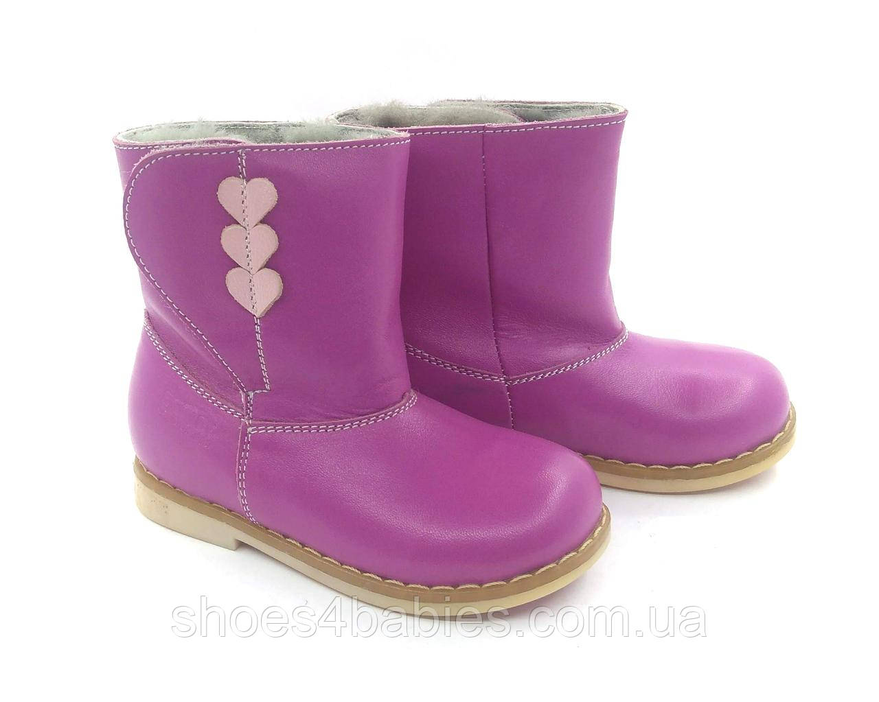 Зимові чобітки ортопедичні Ecoby р. 24 - 16см модель 206F