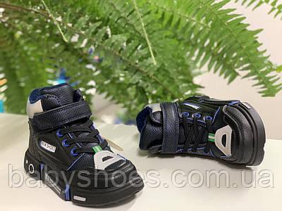 Демисезонные ботинки для мальчика Clibee,Польша р.27-32,  ДМ-293