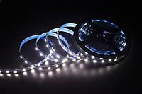 LED стрічка Skarlat LED LV-5050-60-IP44 6000K #K/A, фото 1