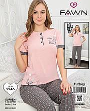 Піжама з довгими штанами,Fawn 5246