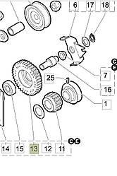 Шестерня переднего хода для культиватора Oleo-Mac MH 185,195 R/RKS на Олео-Мак МН (F1231689)
