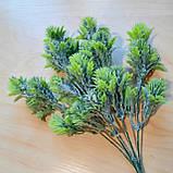 Зелена гілка з бутонами - 40 грн (5 гілочок), фото 5