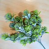 Зелена гілка з бутонами - 40 грн (5 гілочок), фото 4