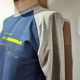 Му р. Чоловічий реглан бавовна батник Reebok Туреччина Синій з сірим останній залишився, фото 5