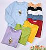 Модний жіночий пуловер з авокадо 44-48 (в кольорах), фото 6