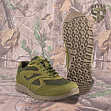 Кросівки Pantherа олива нубук 3D-сітка Airmesh, фото 4