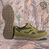 Кросівки Pantherа олива нубук 3D-сітка Airmesh, фото 5