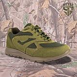 Кросівки Pantherа олива нубук 3D-сітка Airmesh, фото 2