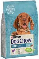 Dog Chow Puppy для щенков с ягненком, 14 кг