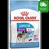 Royal Canin Giant Junior, 15 кг