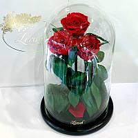 Букет три красные розы в колбе Lerosh - Grand 33 см