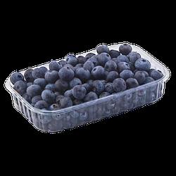 Пластиковый лоток для ягод 250 грамм T6 ПЭТ