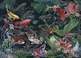 Fish №5