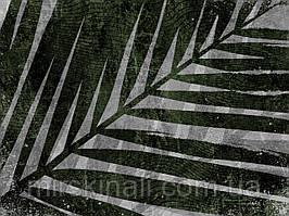 Tropical №18а