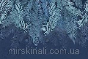 Tropical №6f
