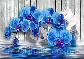 Квіти 312