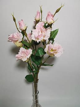 Искусственные цветы. Эустома, пудра.