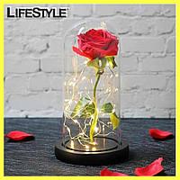 Роза в колбе с LED подсветкой Красная / Цветок в колбе