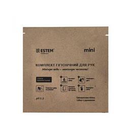 Губка ЕСТЕМ одноразова пінна з дерматологічним гелем Mini № 1