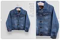 ЖК 14 Жакет, джинс р.110 колір800 синій