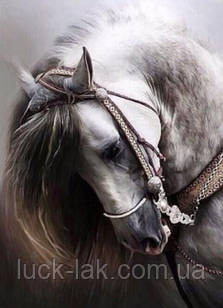 Алмазная вышивка лошадка 25х30 см, полная выкладка
