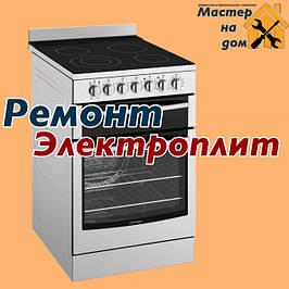 Ремонт электрической и газовой плиты в Запорожье