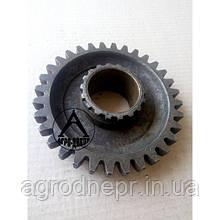 70-1701224 Шестерня привода ходоуменшителя МТЗ z-32