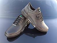 LACOSTE мужские кожаные кеды кроссовки туфли