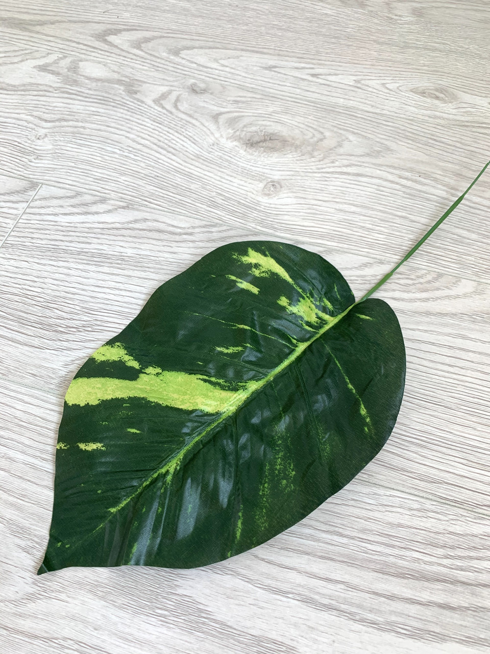 Искусственный лист диффенбахии для декора и добавок в композиции.