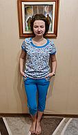 Комплект футболка с бриджами из трикотажа  для дома и улицы р 44-62