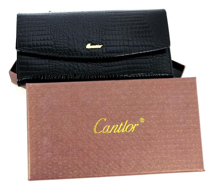 Практичный женский кошелек, клатч Cardinal YR Z050 B36