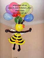 Воздушные шары Николаев