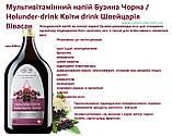 Напиток Бузина черная, снижение веса  Швейцария, фото 3